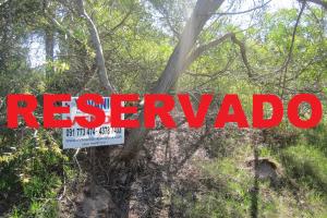 Ref. Y 137 Terreno Cuchilla Alta Sur RESERVADA