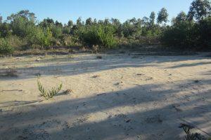 Terreno Balneario Argentino 7 de Playa Ref Y 218