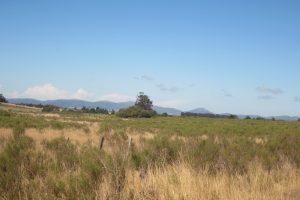Chacra 6has 6500m2 en Piedras de Afilar Canelones Ref Y 328