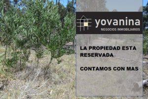 Lindo Terreno Balneario Argentino Ref. Y 330 RESERVADO