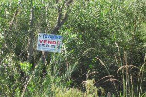 Terreno en Santa Ana 6 de Playa Ref Y 329